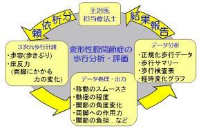 図1 臨床歩行分析の流れ
